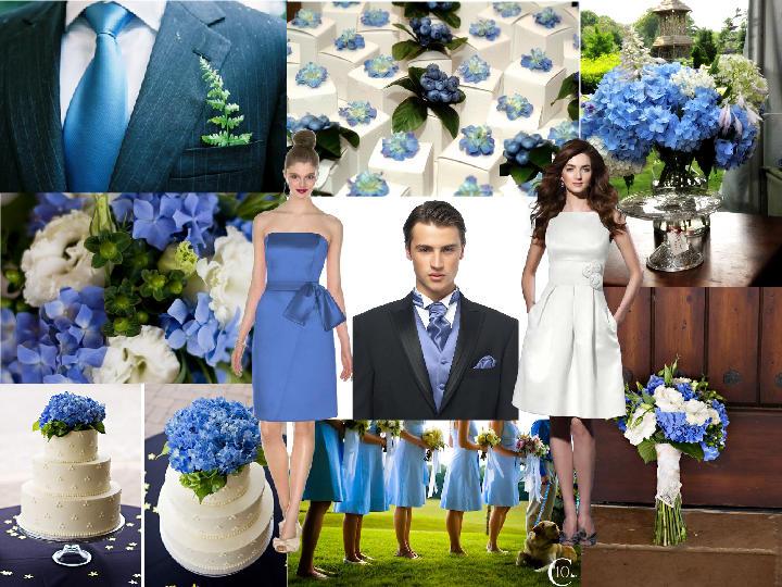 Cornflower blue color